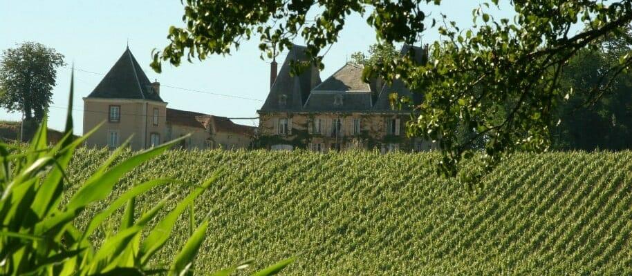 Chez Madiran - Château d'Aydie - Vignes et château