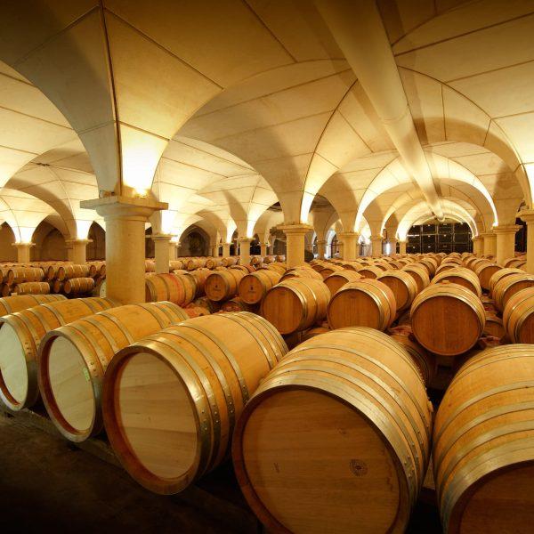 Expérience Madiran - Visite des Vignobles Brumont