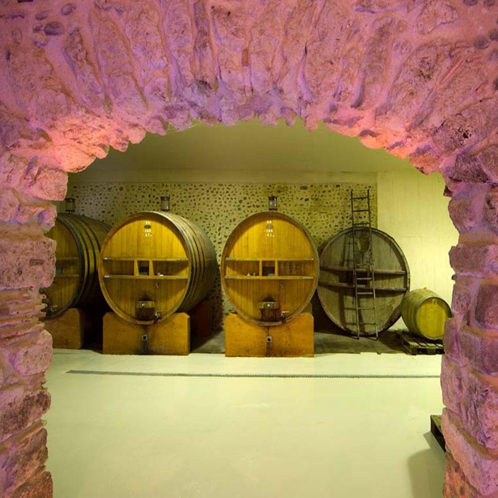 Chai du Domaine Pichard - Chez Madiran
