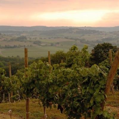 Chez Madiran - Vignobles des cretes-min